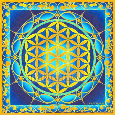 Mandala Květ života II